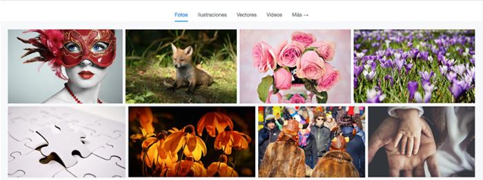 banco de imágenes gratuitas para tu Sitio
